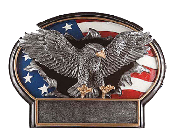 Liberty Burst Thru 3D Eagle Plate Resin Award