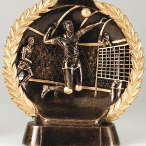 MPI RFH525 Super 3D Male Volleyball Resin Award