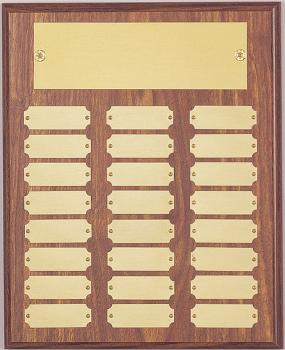 MPI 10 1/2 x 13 Plaque with 24 Plates