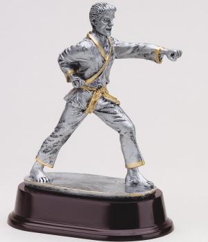 MPI RJ161SG Male Strike Karate Martial Arts Resin Award