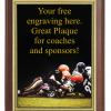 6X8 PLAQUE WITH CUSTOM SPORT PLATE FOOTBALL