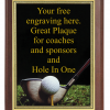 6X8 PLAQUE WITH CUSTOM SPORT PLATE GOLF