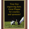 6X8 PLAQUE WITH CUSTOM SPORT PLATE SOCCER